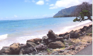 Hawaii!!! omg.