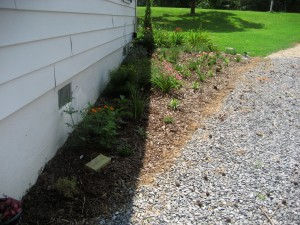 new driveway garden fixes