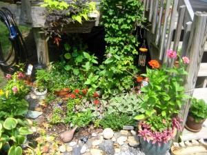 the ex-herb garden