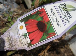 LIAR plant tag!