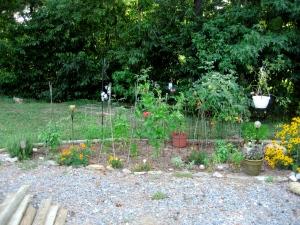 veggie garden on 8/4/09