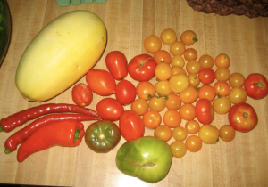 CSA week 7: spaghetti squash, sweet jimmy nardello peppers, hot pepper, tomatoes