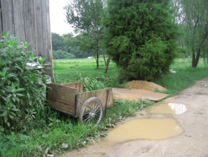 puddles and cart