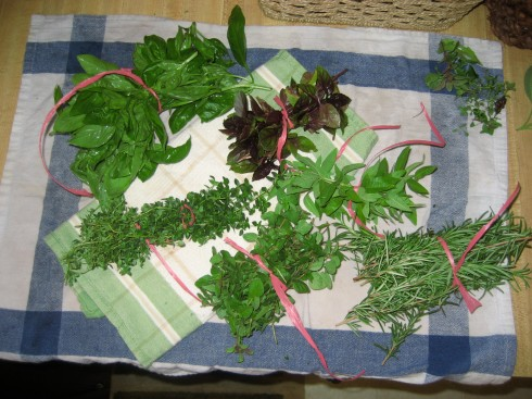 herb bundles