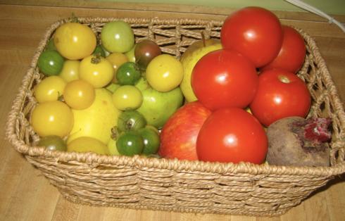 tomatoes etc
