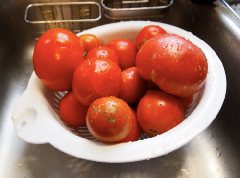 tomatoes in the sink